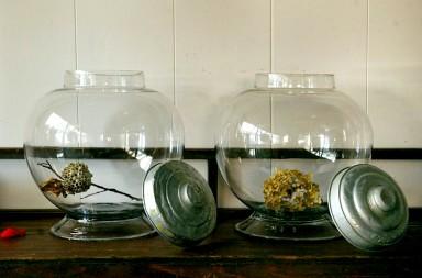 繡球花乾燥二三事
